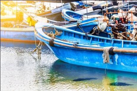 Fungsi Aplikasi Digital Perikanan di Indonesia